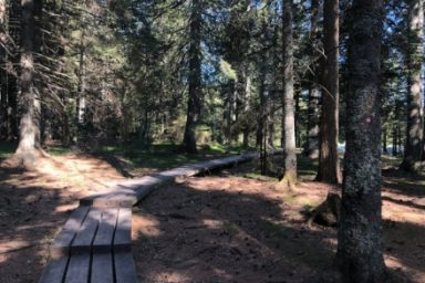 Crno jezero – Osankarica (3)