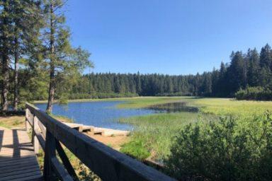 Crno jezero – Osankarica (4)