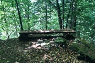 Gozdna ucna pot Ursank (13)