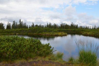 Lovrenska jezera (1)