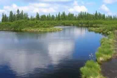 Lovrenska jezera (6)