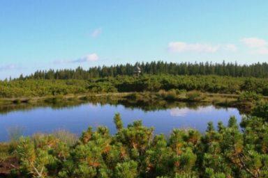 Lovrenska jezera (7)