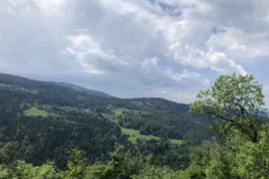 Pohorje – Areh (11)