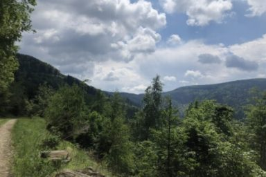 Pohorje – Areh (12)