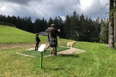 Pohorje – Areh (17)