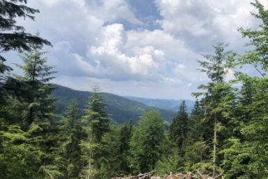 Pohorje – Areh (9)