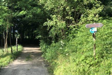 Sprehajalna pot Pod goroj (6)