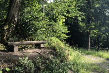 Sprehajalna pot Pod goroj (8)