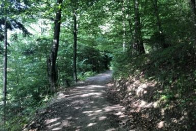 Sprehajalna pot Pod goroj (9)