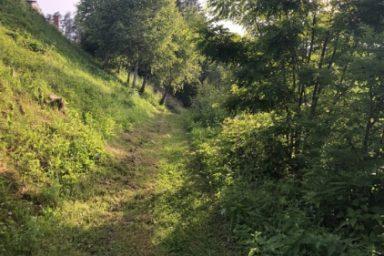 Sprehajalna pot Zadravje (5)