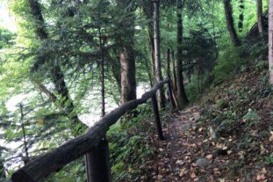 Sprehajalna pot Zadravje (7)